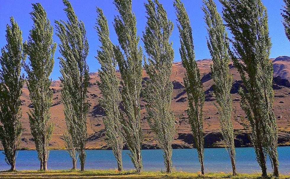 Lake Dunstan Otago Region Cromwell