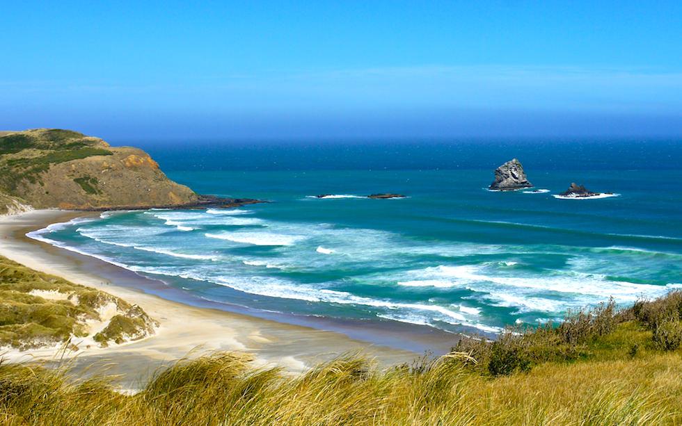 Sandfly Bay Otago Peninsula near Dunedin New Zealand