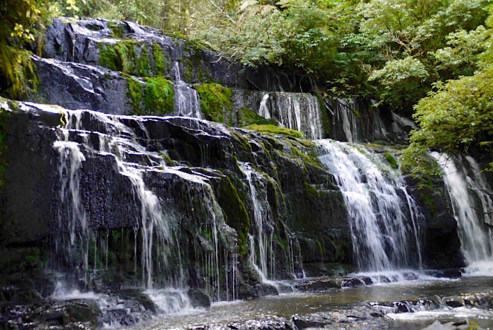 Wasserfälle der Catlins: Purakaunui Falls sind das Wahrzeichen der The Catlins - Neuseeland, Südinsel