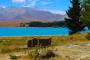 Lake Tekapo – Ein weiteres türkisfarbenes Juwel im Mount Cook National Park