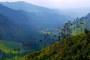 Valle del Cocora Wanderung: Gigantische Wachspalmen, Nebelwald, Kolibris & Berge
