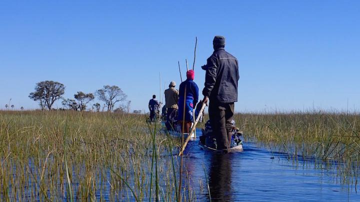 Okavango Delta Mokoro Tour Botswana Afrika