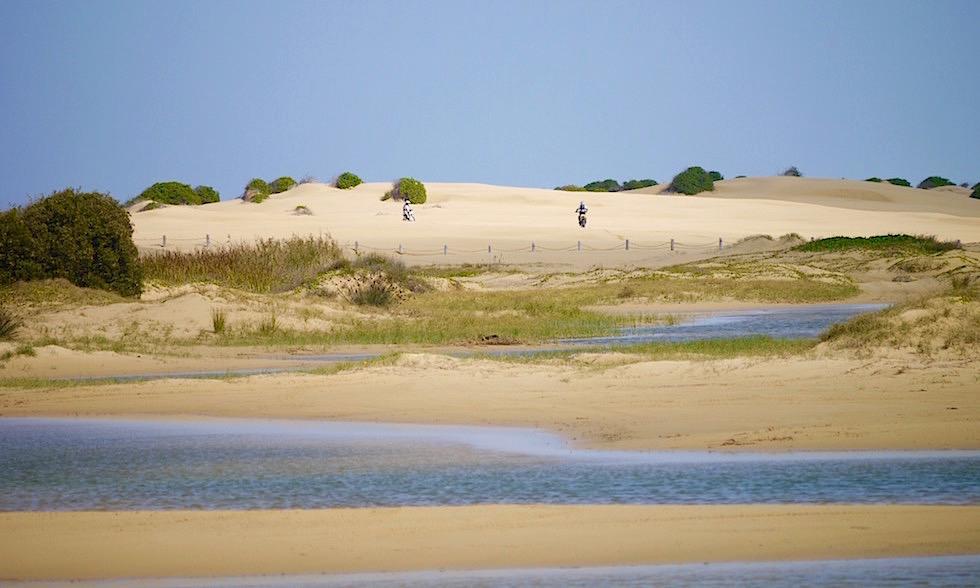 Sanddünen Port Stephens NSW