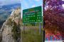 Abenteuer Great Alpine Road – Australian Alps, Omeo, Bright, Mt Buffalo!