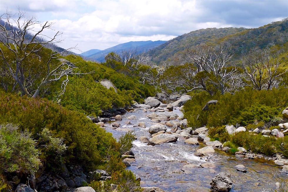 Thredbo River Walk - Kosciuszko National Park - NSW