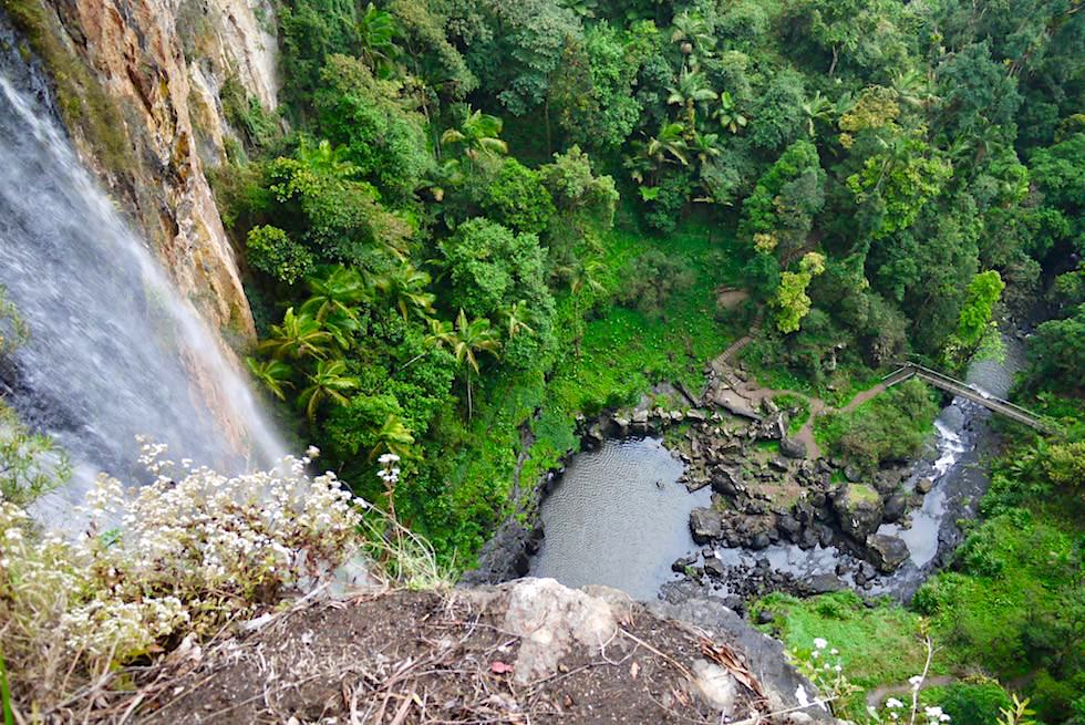 Springbrook National Park - Atemberaubender Ausblick auf die Purling Brook Falls - Queensland