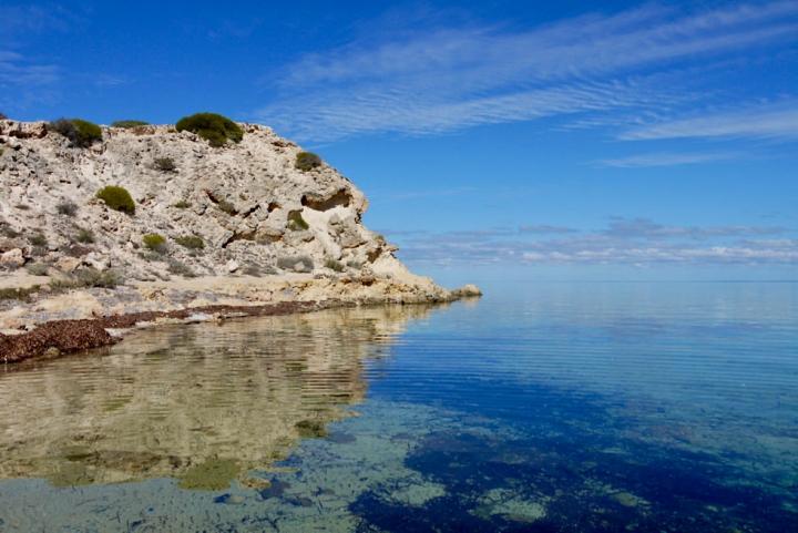Shark Bay Highlights - Zauberhafte Whalebone Bay - Western Australia
