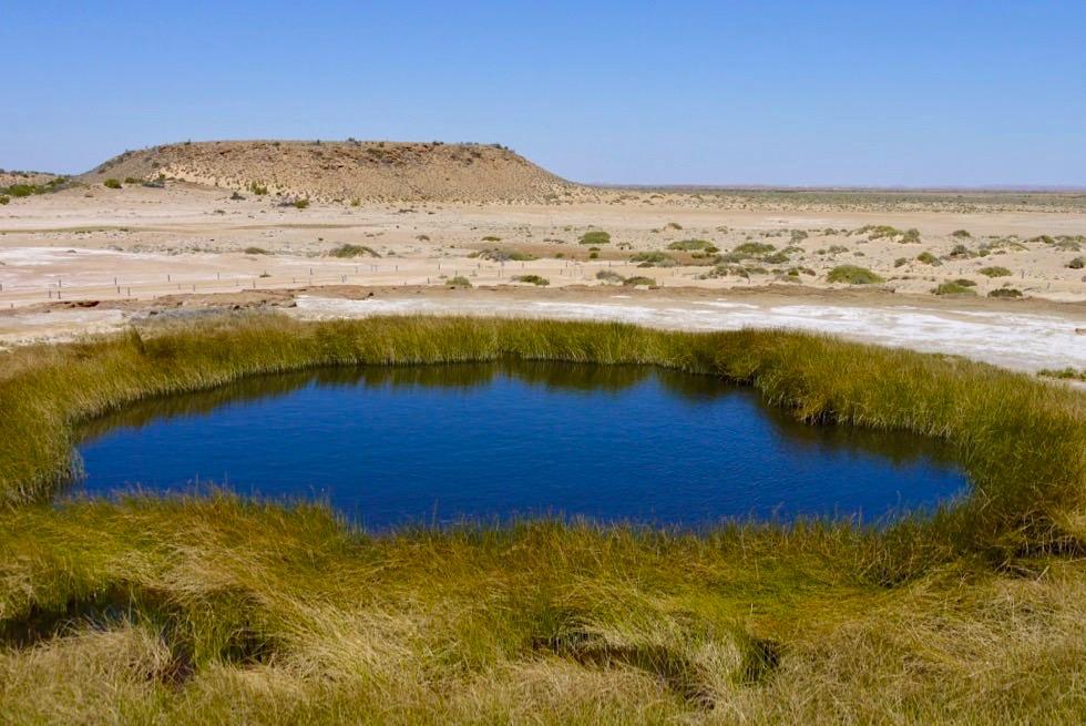 Oodnadatta Track - Wabma Kadarbu Mound Springs: Blanche Cup - South Australia