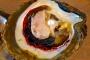 Broome Perlen Farm Tour – Juwelen des Ozeans: Wie werden Südsee Perlen gezüchtet?