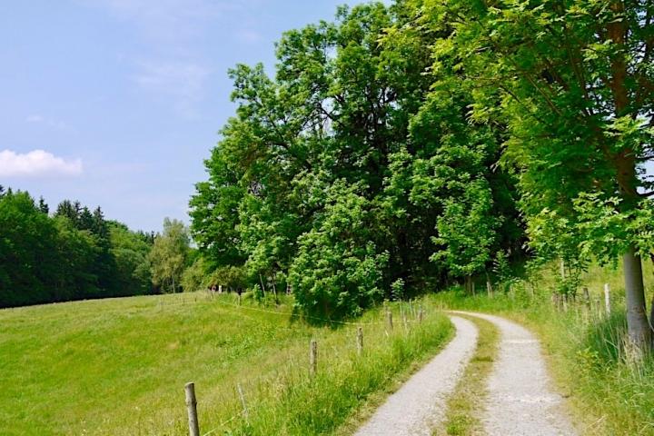 Wiesenänger Etappe 03 - Wandern in der Erlebniswelt Glückswege - Wandertrilogie Allgäu - Bayern