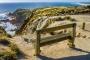 Phillip Island Highlights – Grandiose Natur, Pinguine, Koalas & Strände