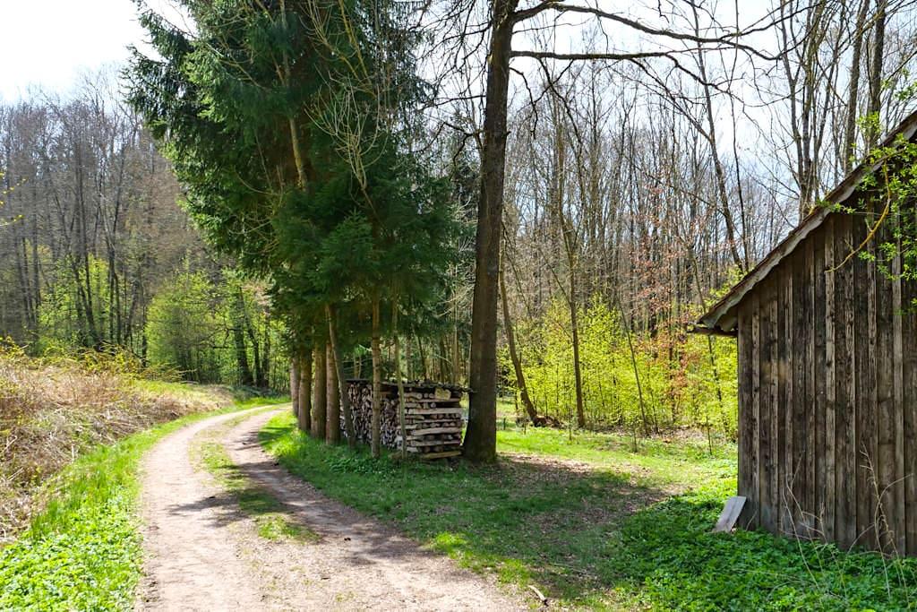 Abzweig zur Steinernen Rinne & den Sinterterrassen Hoher Brunnen - Erasbach im Altmühltal, Bayern