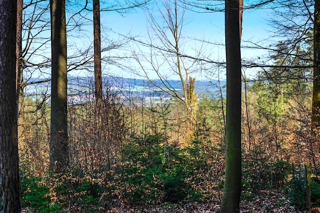 Ausblicke von versteckten Waldwegen - Rundwanderung Sinterterrassen Hoher Brunnen, Steinerne Rinne & Erasbach - Bayern