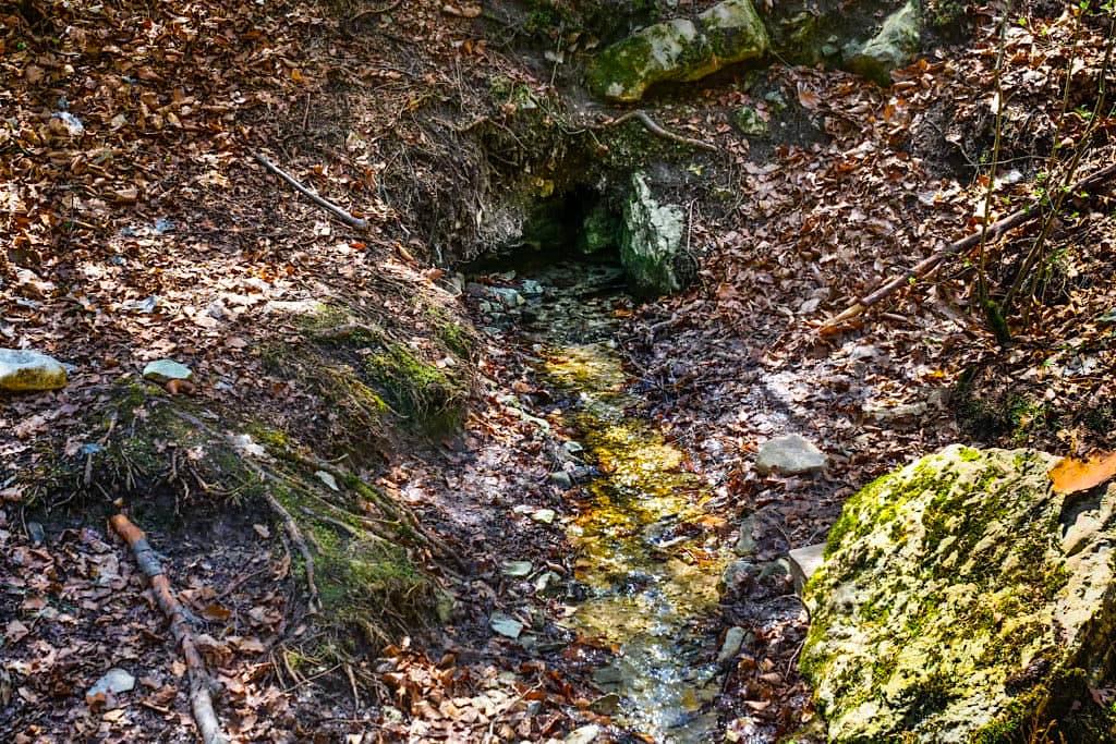 Franzosenbrunnen & Quelltopf Steinerne Rinne - Wanderung Sinterterrassen Hoher Brunnen - Erasbach, Bayern