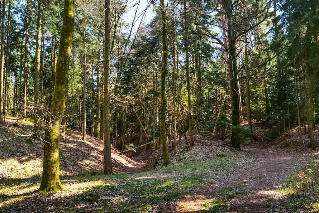Burgstall Häferloch - Überwucherter Burggraben & Burgterrasse - Rundwanderung Sinterterrassen Hoher Brunnen nach Weidenwang - Altmühltal, Bayern