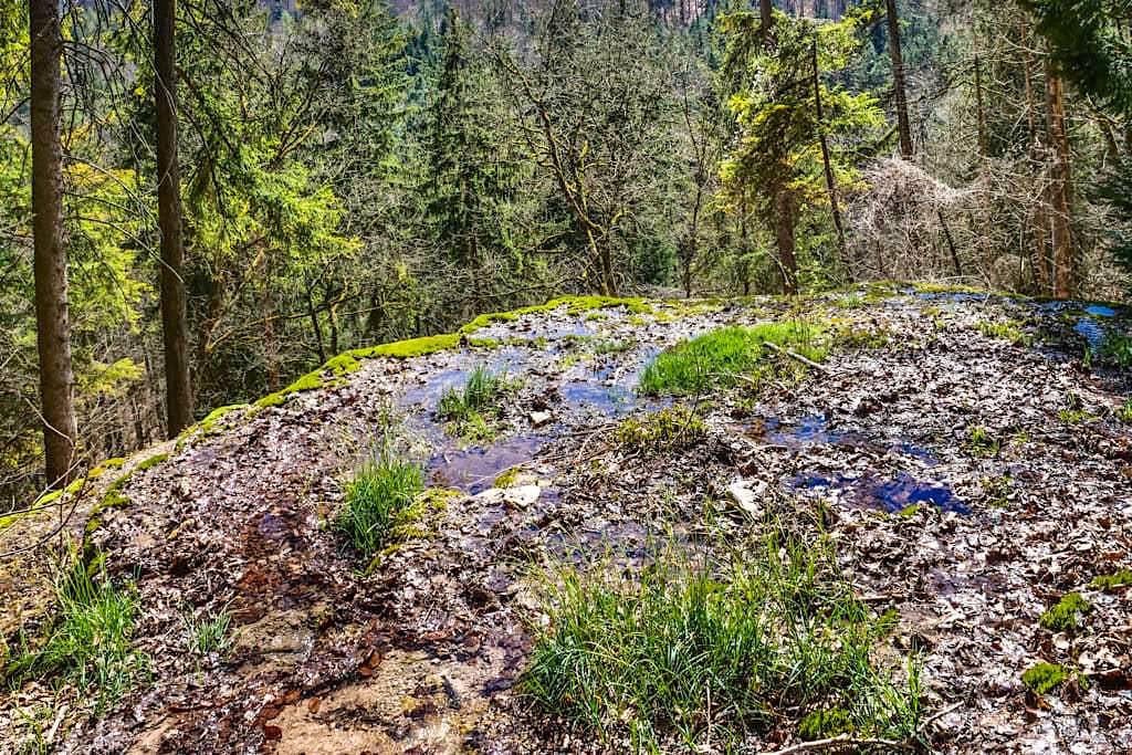 Sinterterrassen Hoher Brunnen von oben - Faszinierende Naturwunder-Wanderung bei Erasbach - Altmühltal, Bayern