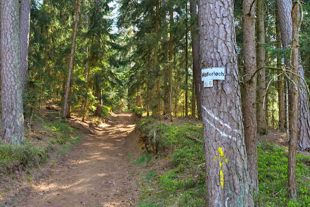 Hohlweg zum Häferloch - Sinterterrassen Hoher Brunnen & Steinerne Rinne Wanderung bei Erasbach - Bayern