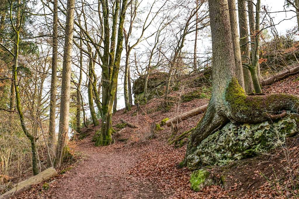 Aufstieg durch den Wald in Landershofen - Ende der Traumschlaufe Eichstätt Wanderung - Bayern