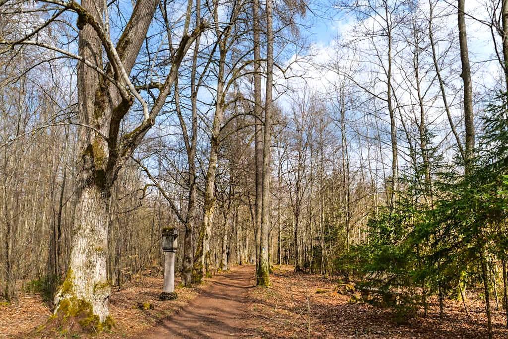 Wildidyllische Lindenallee mit ältestem Kreuzweg in Bayern - TraumSchlaufe Eichstätt Nr. 14 Geheimtipp-Wanderung - Buchenhüll im Altmühltal