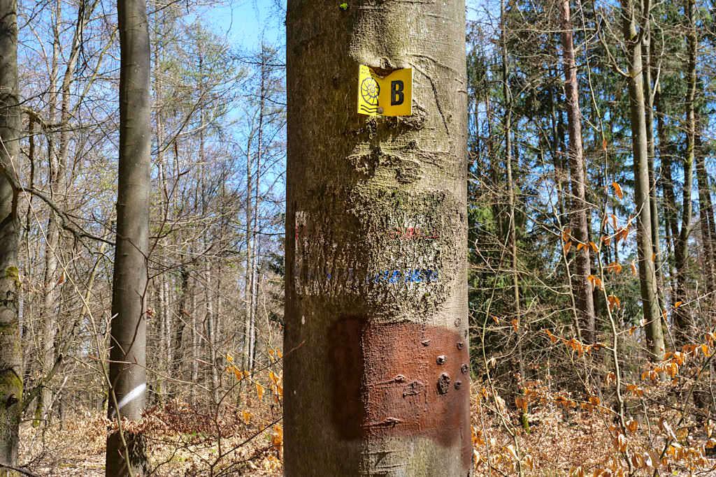 Markierung Hoher Brunnen & Sinterterrassen - Schöne Rundwanderung bei Erasbach im Altmühltal - Bayern