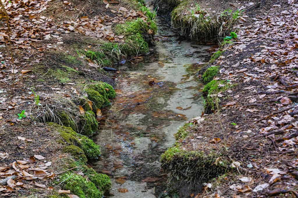 Quelle & Zufluss zur Steinernen Rinne - Erasbach im Altmühltal, Bayern