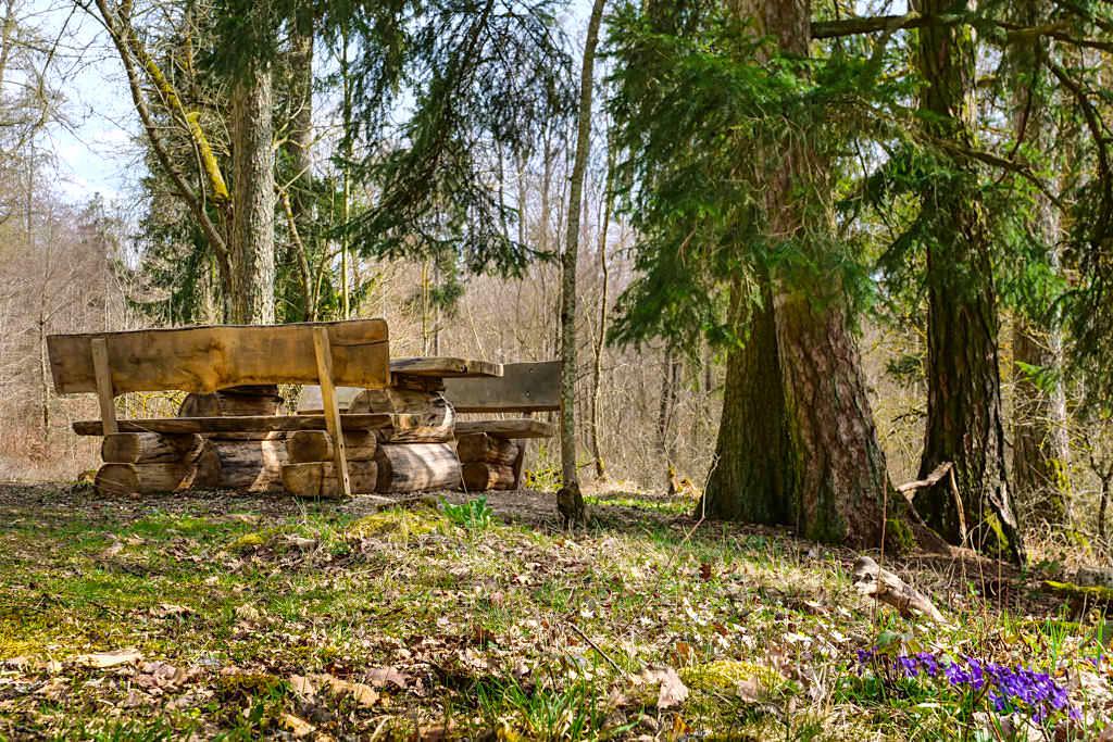 Schöner uriger Rastplatz im Wald auf der TraumSchlaufe Eichstätt Nr. 14 Wanderung - Altmühltal Geheimtipps - Bayern