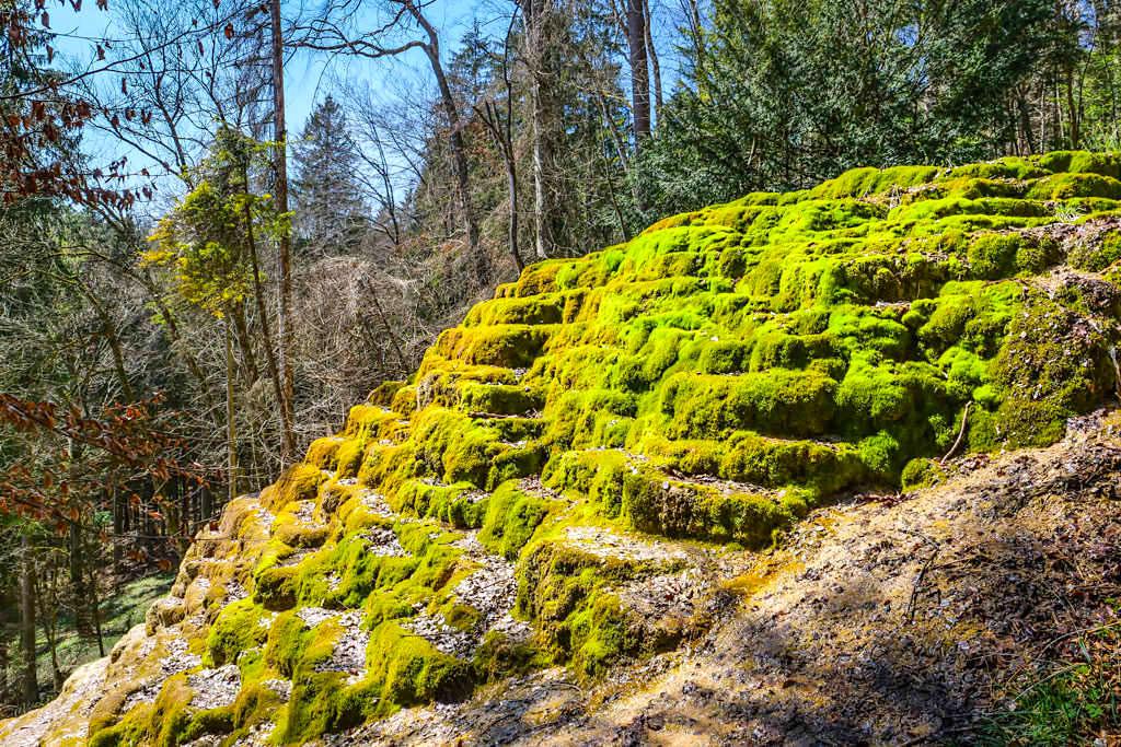 Faszination Sinterterrassen Hoher Brunnen: ein geologisches Kuriosum - Rundwanderung Erasbach im schönen Naturpark Altmühltal - Bayern