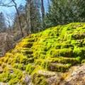 Naturphänomen Sinterterrassen Hoher Brunnen - Faszinierende Rundwanderung & Geheimtipp bei Erasbach im schönen Altmühltal - Bayern