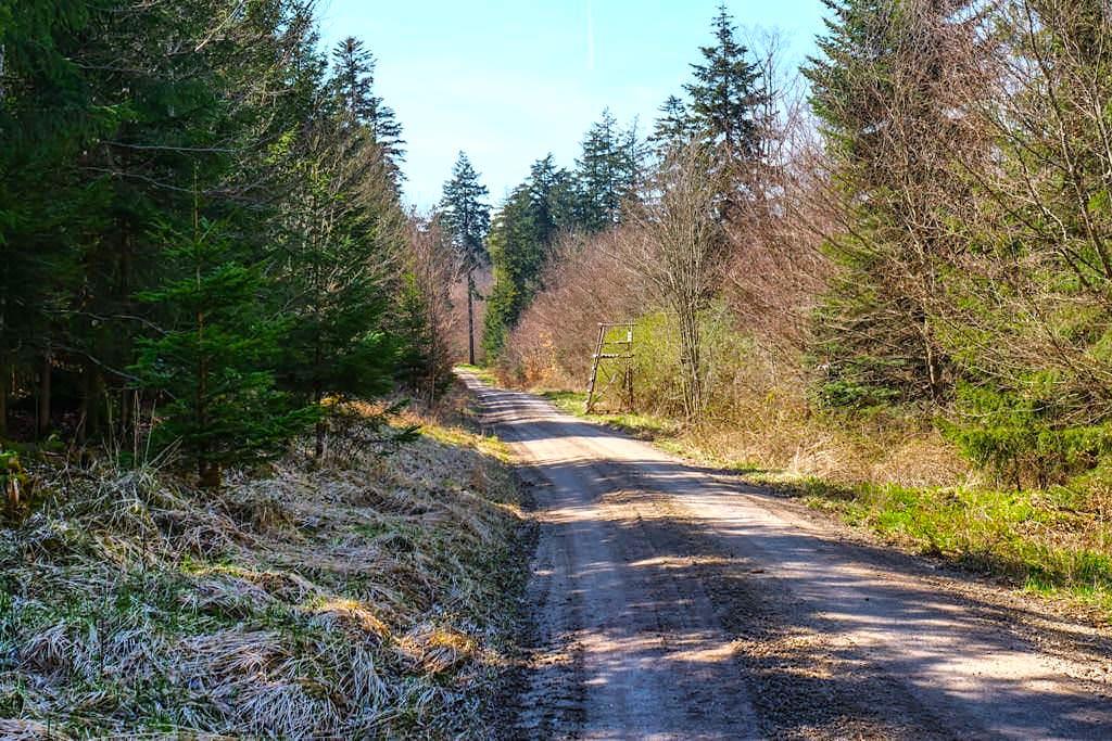 Von den Sinterterrassen Hoher Brunnen nach Weidenwang - Rundwanderung durch die Wälder bei Erasbach Bayern