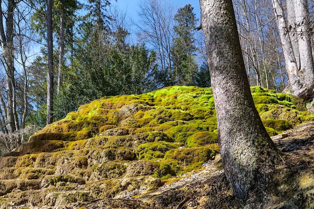 Faszinierende Sinterterrassen Hoher Brunnen von unten gesehen - Erasbach Rundwanderung im schönen Naturpark Altmühltal - Bayern