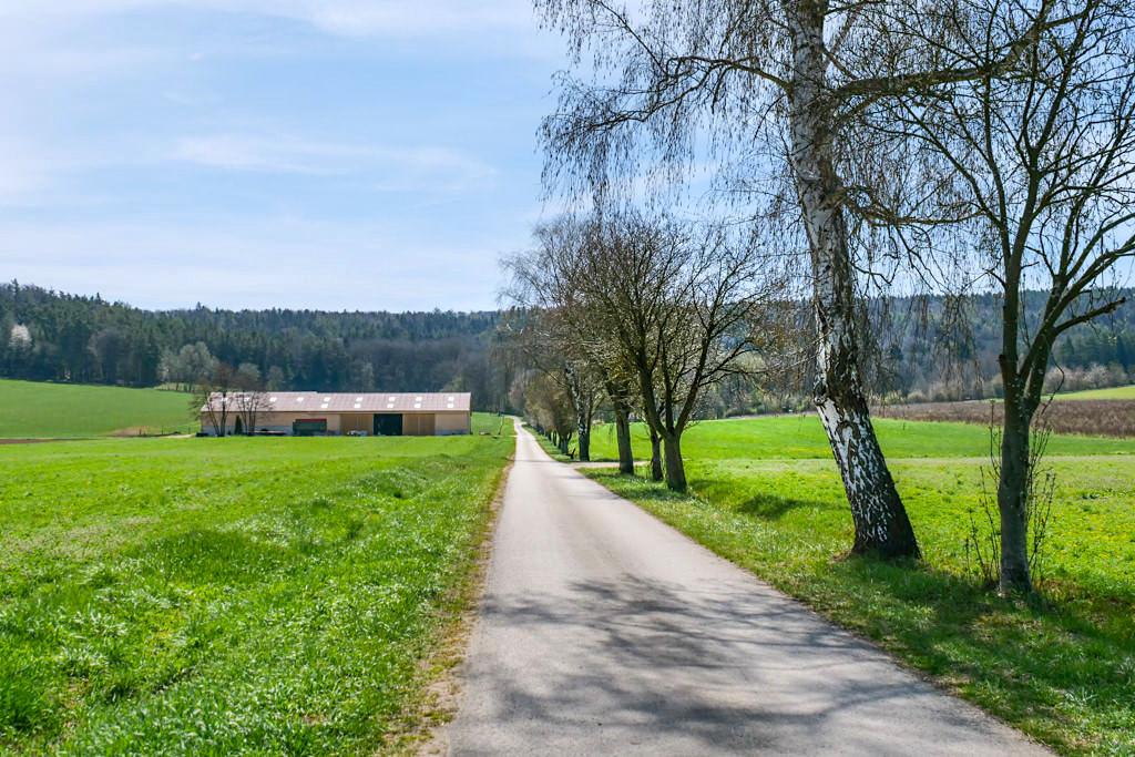 Start zur Rundwanderung Steinere Rinne & Sinterterrassen Hoher Brunnen in Erasbach - Bayern