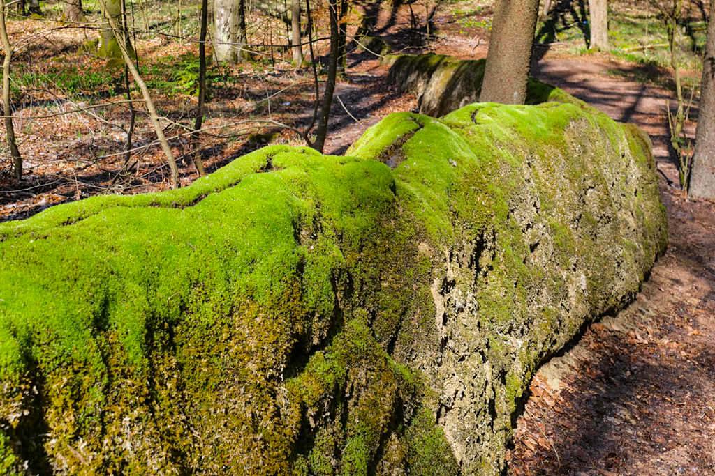 Steinerne Rinne oder Wachsende Steine - Wie entstehen sie? - Naturwunder im Altmühltal, Bayern