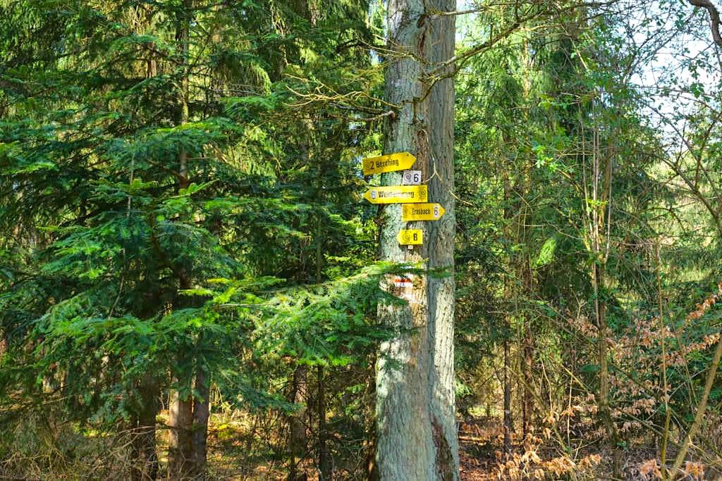 Wald-Highway - Sinterterrassen Hoher Brunnen & Steinerne Rinne Wanderung - Altmühltal, Bayern