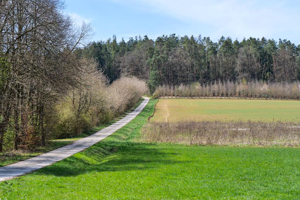Herrliche Rundwanderung zur Steinernen Rinne & Sinterterrassen Hoher Brunnen im Altmühltal - Erasbach, Bayern