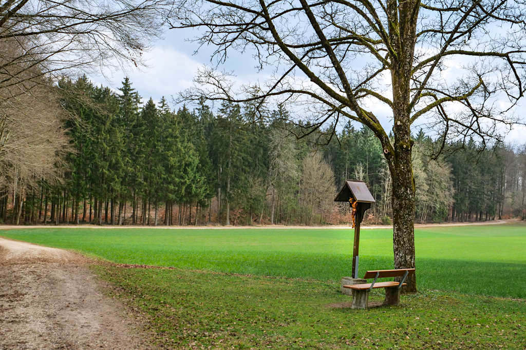 Wiesenkreuz - TraumSchlaufe Eichstätt Nr. 14 Wanderung - Altmühltal, Bayern