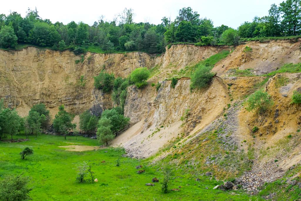 Aufschlusswand im Geotop Lindle und geschütztes Biotop- Nördlingen, Bayern