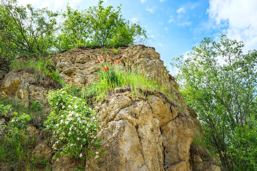 Faszinierend schöner Suevit-Steinbruch Aumühle im Donau-Ries - Top 100 der schönsten Geotop in Bayern